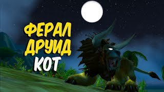 Гайд по ферал друиду коту в World of Warcraft Classic (Feral druid Cat)