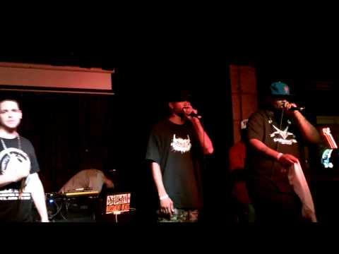 Cannibal OX - Vein - Live 2013 Tampa, FL