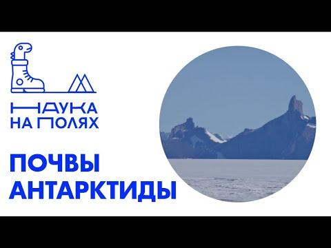 Почвы Антарктиды| Эля Зазовская