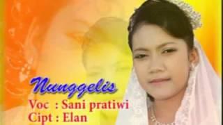 Sani Pratiwi - Nunggelis