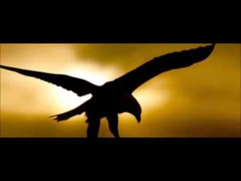"""la-soledad-del-águila"""