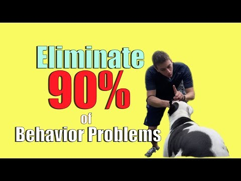Do this ONE THING to ELIMINATE 90% of Behavior Problems