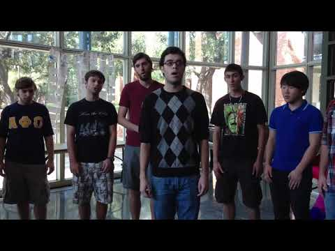 Falling Slowly For My Skinny Love (A Cappella)