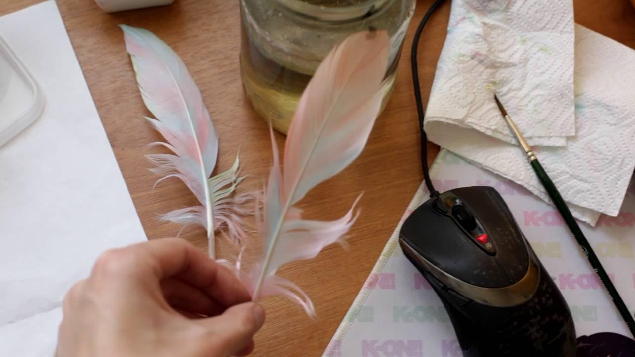 Окраска перьев в домашних условиях. Обсуждение на LiveInternet 17