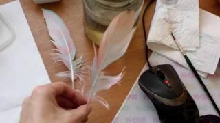 Красим перья часть 1