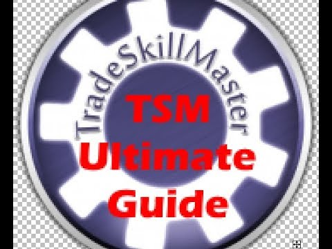 Ultimate TSM Guide Part 2 | Profession Crafting and Gathering | How