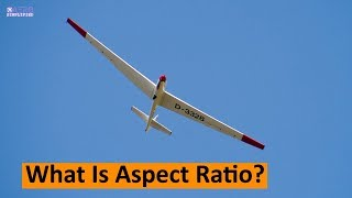 What is Aspect Ratio ? How does it effect on Aircraft ? [Hindi]