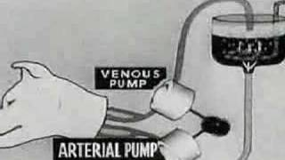 Experiments in the Revival of Organisms (1940) Part 1 thumbnail