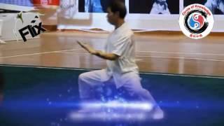 My Master, Lin Yuan Dun Zhenlan White Crane