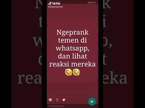 Rangkuman 2020 TikTok Prank Chat Prank Teks. Gokil Baper Romantis Jadi Satu