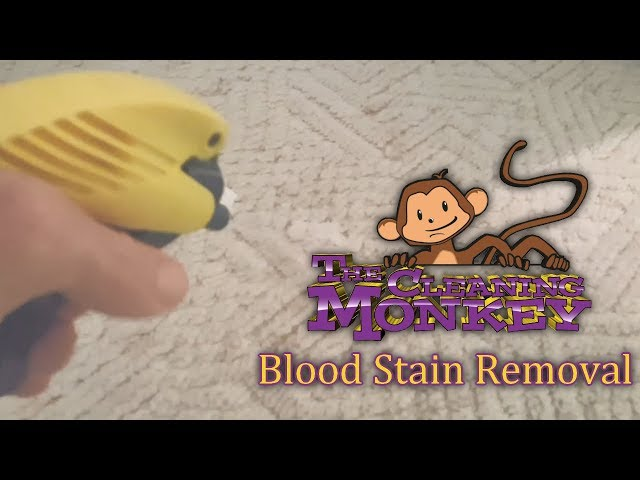 The Cleaning Monkey - How To Remove Blood Stains