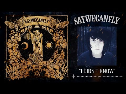 SayWeCanFly - 'I Didn't Know' (NEW SONG)