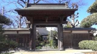 大山街道歩き旅#22 【糟屋宿】→伊勢原大神宮 2017/01/21