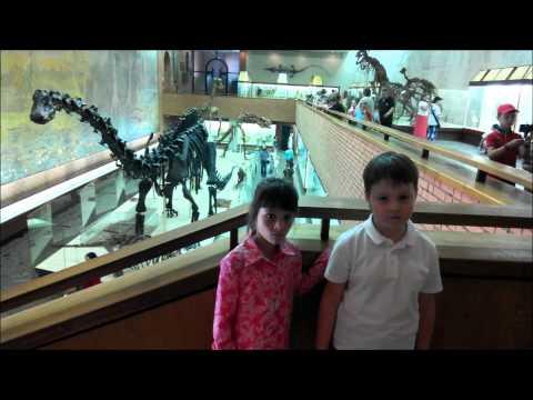 Палеонтологический музей г.Москва! Поезд динозавров....