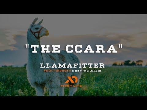 The Ccara