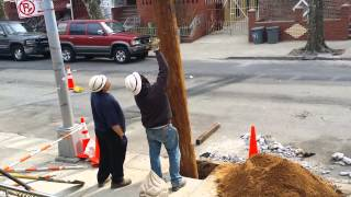 New Utility Pole Install