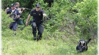 How To Train Dogs For Rescue - Tracking Dogs- Rescue Dogs - Tvagro By Juan Gonzalo Angel