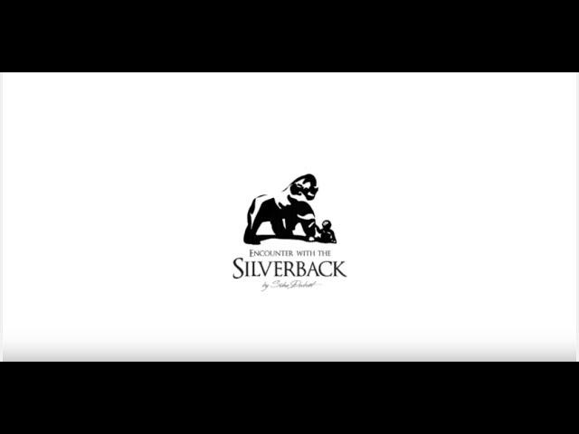 Silverback Suha Derbent BackStage Ruanda