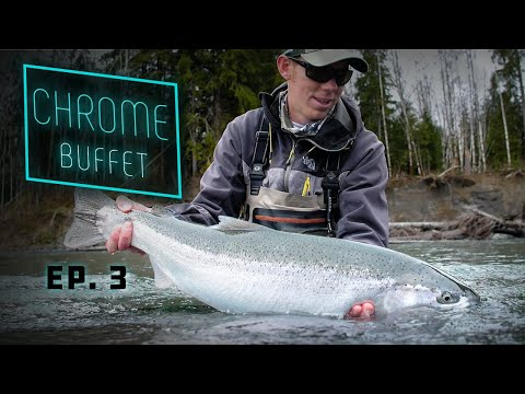 CHROME Buffet - GIANT Steelhead Olympic Peninsula Fishing