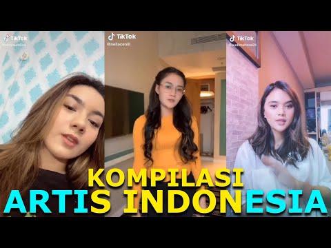 KOMPILASI TIKTOK ARTIS INDONESIA