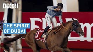 Dubai, Spirit of Dubai Video (HD) 2015