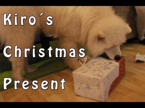 Kiro´s Christmas Present