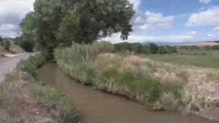 RIO GRANDE RESEARCH FOR WATER CONSERVATION