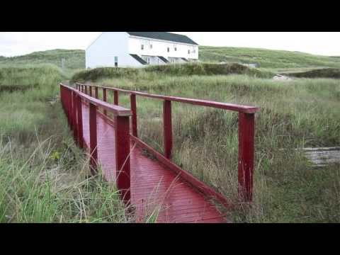 Facts About Sable Island by Elizabeth Connors