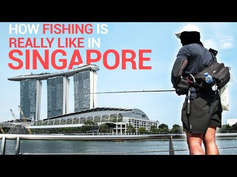 Illegal Fishing In Singapore