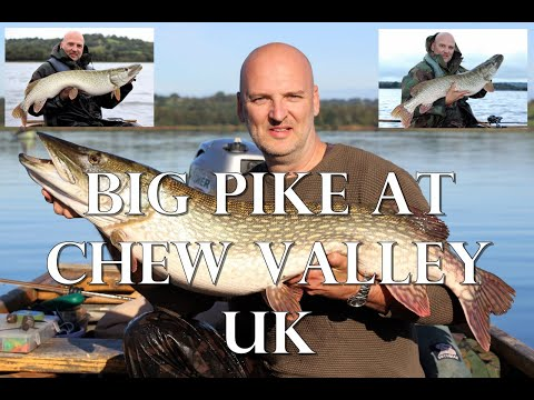 Pike Fishing At Chew Valley