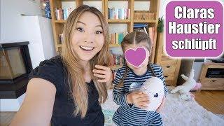Claras neues Haustier 😍 Geburt von Baby Hatchimals! Grillen im Garten | Familien Leben | Mamiseelen