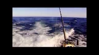 """Телеканал """"Охота и рыбалка"""" - Испанские фильмы о рыбалке"""