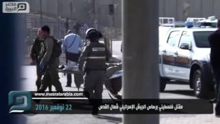 مصر العربية | مقتل فلسطيني برصاص الجيش الإسرائيلي شمال القدس