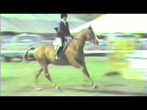 Simon Says children services horse show 1988
