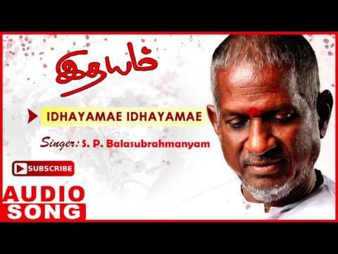 Idhayam Tamil Movie Songs | Idhayamae Full Song | Murali | Heera | Ilayaraja | Music Master