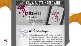 La sostenibilità nella vitivinicoltura è VIVA!