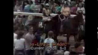 SWALE - Kentucky Derby 1984