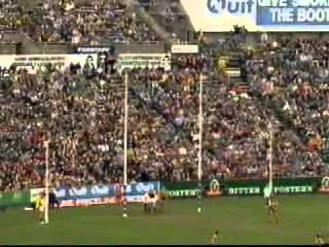 1993 AFL - THAT WAS THE SEASON THAT WAS