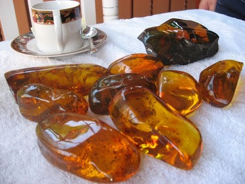 TerraTreasures Up Into The Mountains And Down Into La Toca Amber Mine, Dominican Republic