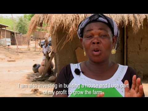 CASH for Ghanian farmers