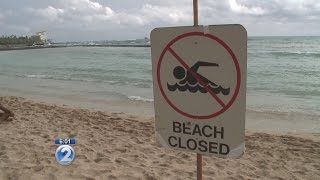 City: Breakdown of communications may have led to Ala Moana sewage spill
