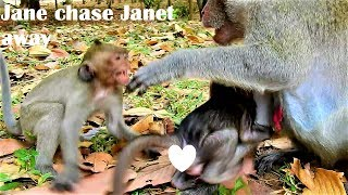 Heart Broken! Janet cry so loudly when Jane chase away so hard, Why Janet still catch Janna for milk