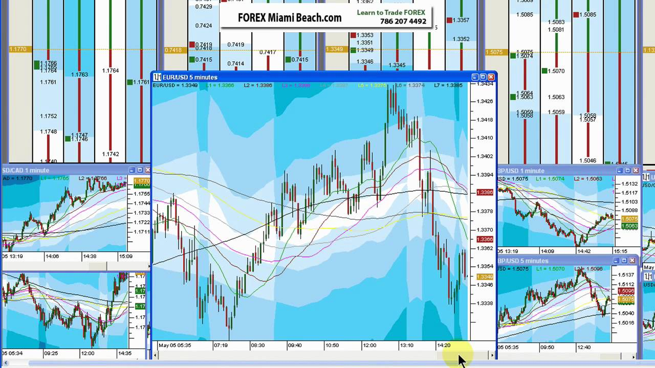 Forex trading in miami