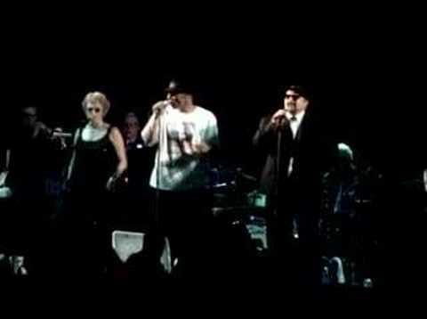 Late Nite Blues Brothers Live-Jailhouse Rock