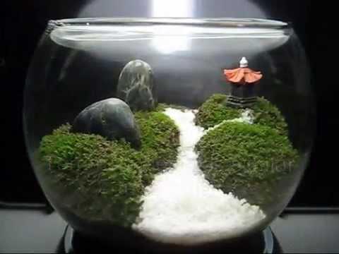 Singapore LimSan's Moss Terrarium - Journey / モステラリウム - 旅 / Мосс Террариум  - Путешествие - YouTube - Singapore LimSan's Moss Terrarium - Journey / モステラリウム - 旅