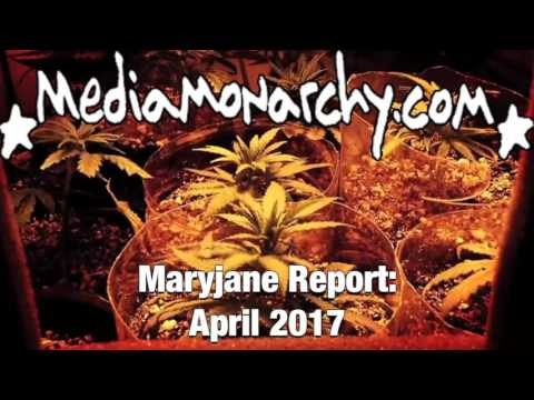 Making Millions Off Marijuana - #MaryjaneReport