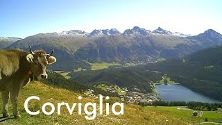 SWITZERLAND: Corviglia - summit above St. Moritz (2,486 m) [HD]