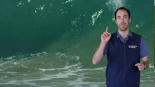 Fast Ocean Facts — Marine Bacteria