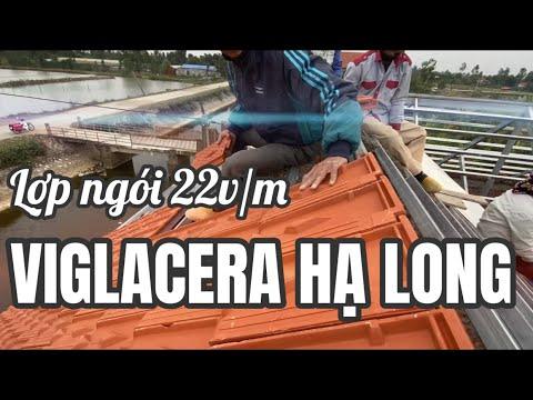 Lợp Ngói 22v/m Viglacera Hạ Long (Tiêu Giao) Trên Kèo Sắt | Gạch Ngói Viglacera Hạ Long