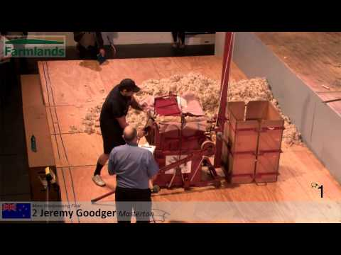 Mens Pressing Final (Farmlands & Woolpacks NZ) - 2015 Golden Shears